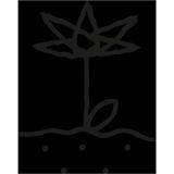 1. Blumen bestellen